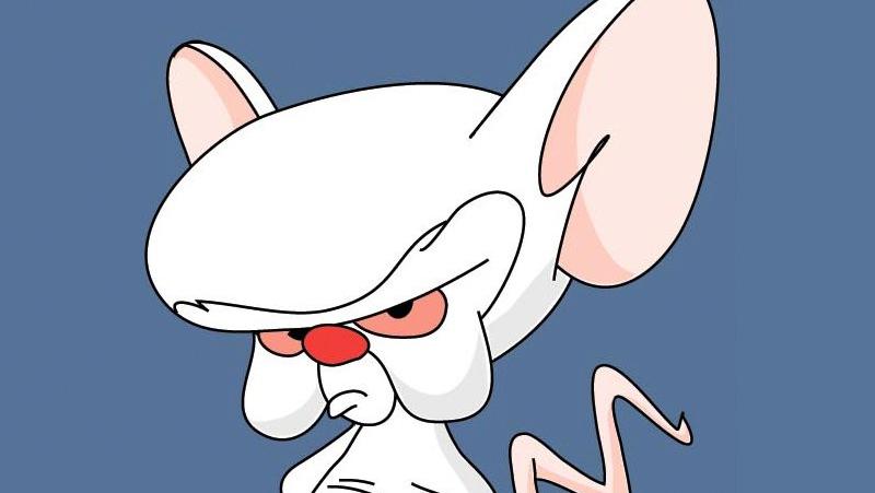 brainpinky
