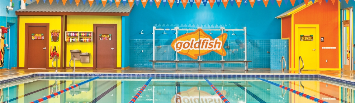 goldfish swim
